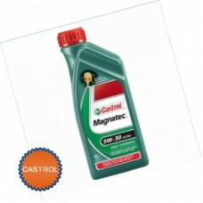 CASTROL Масло моторное Ford Magnatec Professional E SAE 5w30 масло (1л) 151FF3 Синтетика